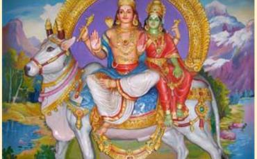 Pradhosham & Hanuman Pooja